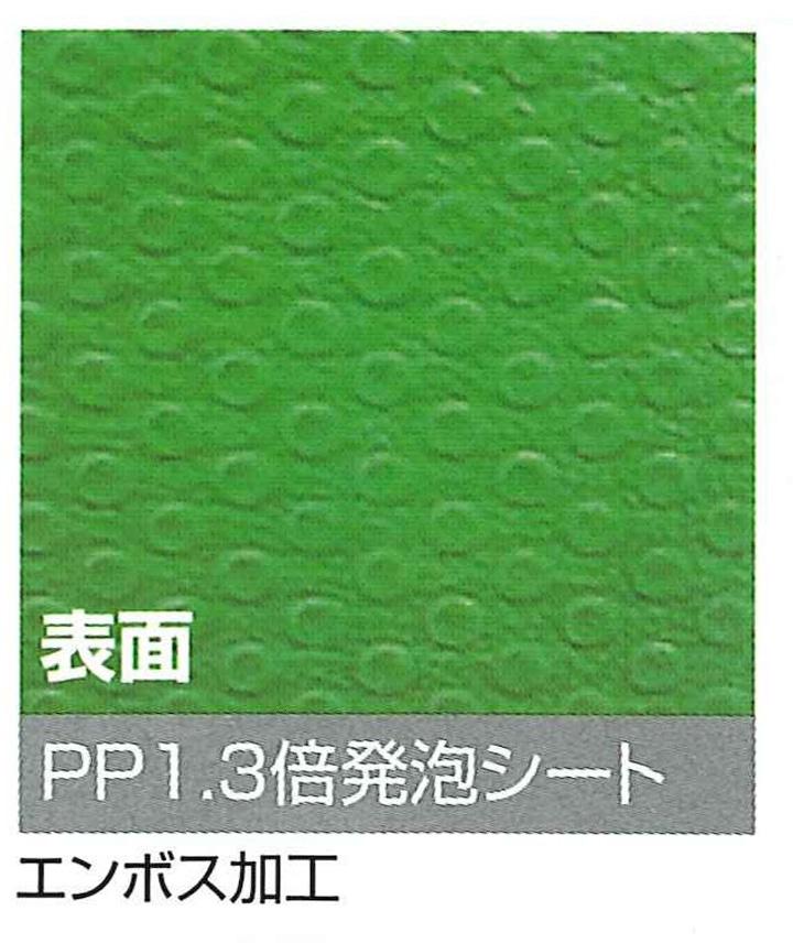 プラベニソフト画像-3